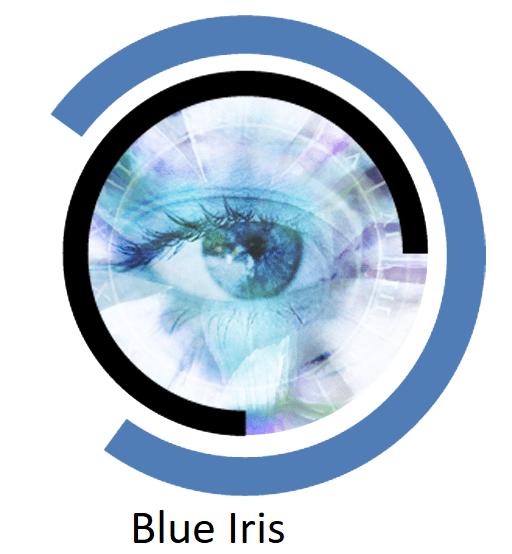 Blue Iris Crack Registration Key