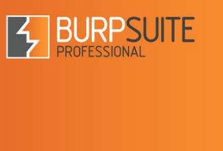 Burp Suite Professional Crack