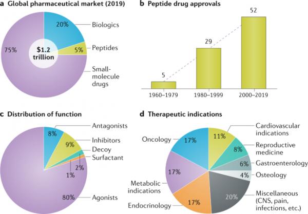 Global Peptide Therapeutics Market Registration Key